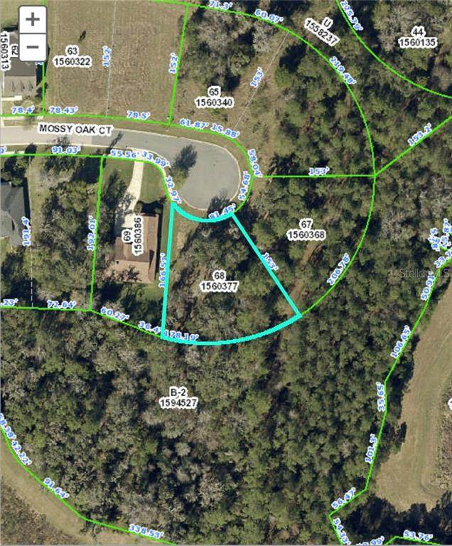 Address Not Published, Brooksville, FL 34601 (MLS #T3249243) :: Griffin Group