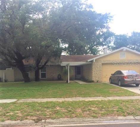 1810 Lakeview Drive, Brandon, FL 33511 (MLS #T3251663) :: Frankenstein Home Team