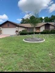 4527 Goldcoast Avenue, Spring Hill, FL 34609 (MLS #T3251699) :: Baird Realty Group
