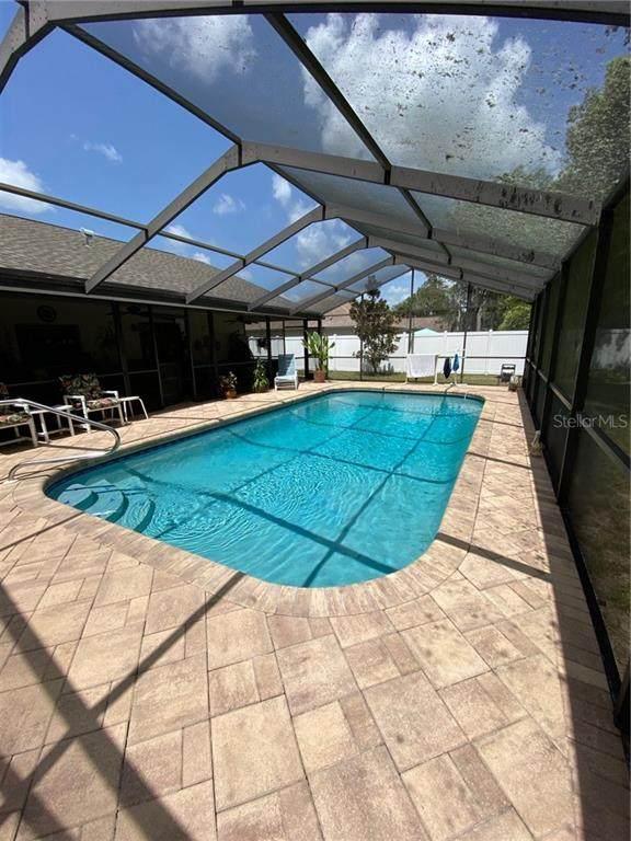 14140 Indigo Street, Spring Hill, FL 34609 (MLS #T3252144) :: Carmena and Associates Realty Group