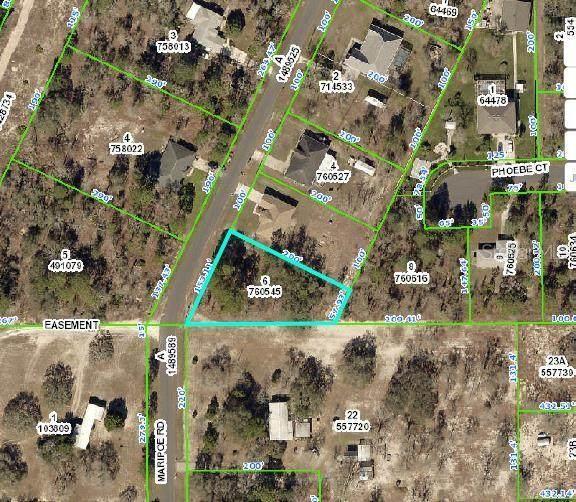 Maripoe Road, Weeki Wachee, FL 34614 (MLS #T3252193) :: Premium Properties Real Estate Services