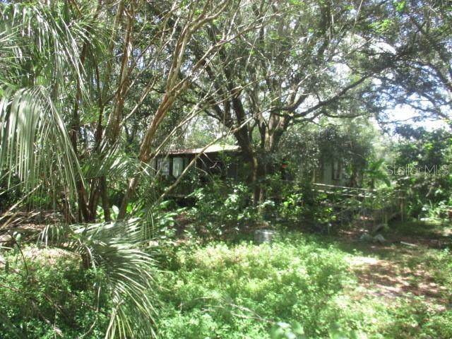 13370 Douglas Road, Dade City, FL 33525 (MLS #T3255007) :: Team Bohannon Keller Williams, Tampa Properties