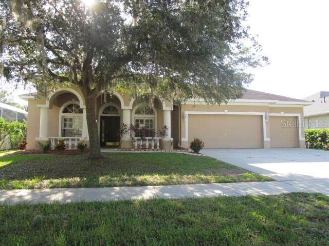 5304 Winhawk Way, Lutz, FL 33558 (MLS #T3256857) :: Premier Home Experts