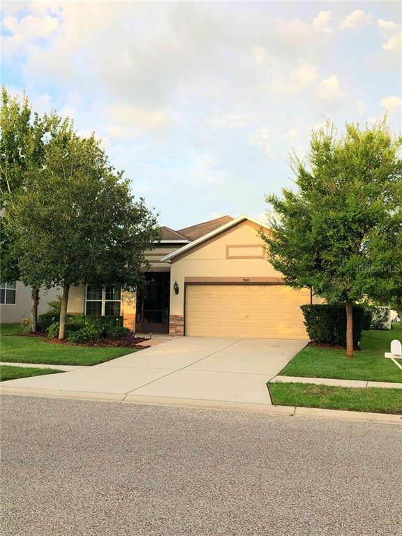 7646 Atwood Drive, Wesley Chapel, FL 33545 (MLS #T3256887) :: Premier Home Experts