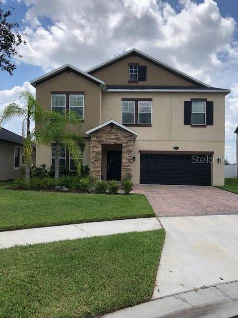 19470 Paddock View Drive, Tampa, FL 33647 (MLS #T3257455) :: Dalton Wade Real Estate Group