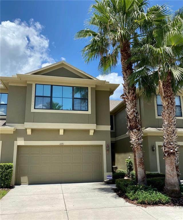 1081 118TH Terrace N, St Petersburg, FL 33716 (MLS #T3257639) :: Griffin Group