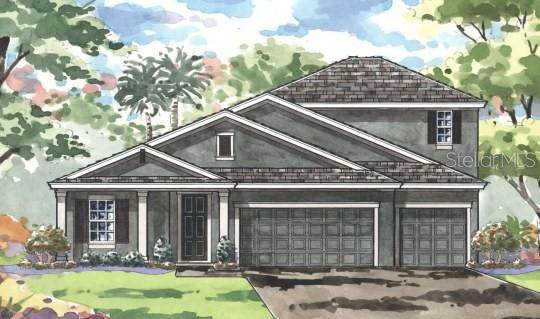 8740 Blue Myrtle Way, Land O Lakes, FL 34637 (MLS #T3258456) :: The Robertson Real Estate Group