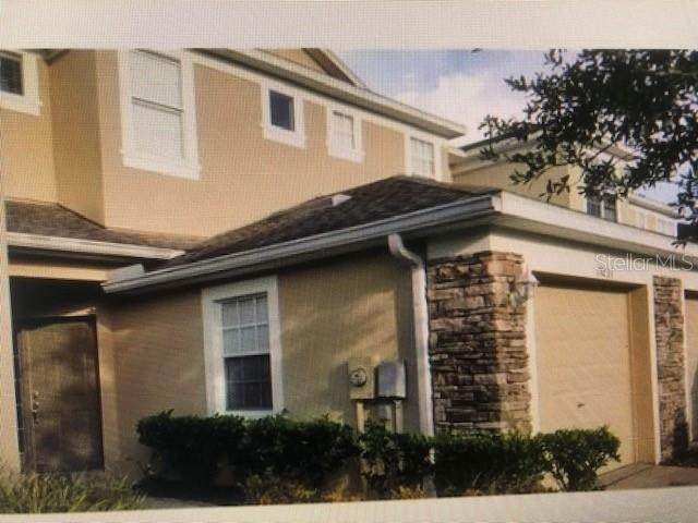 19233 Stone Hedge Drive, Tampa, FL 33647 (MLS #T3258932) :: Ramos Professionals Group