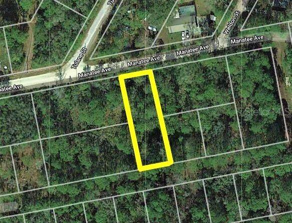 Manatee Avenue, New Port Richey, FL 34654 (MLS #T3260240) :: Bustamante Real Estate
