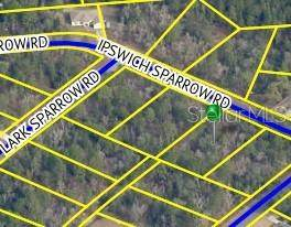 Lot 15 Ipswich Sparrow Road - Photo 1