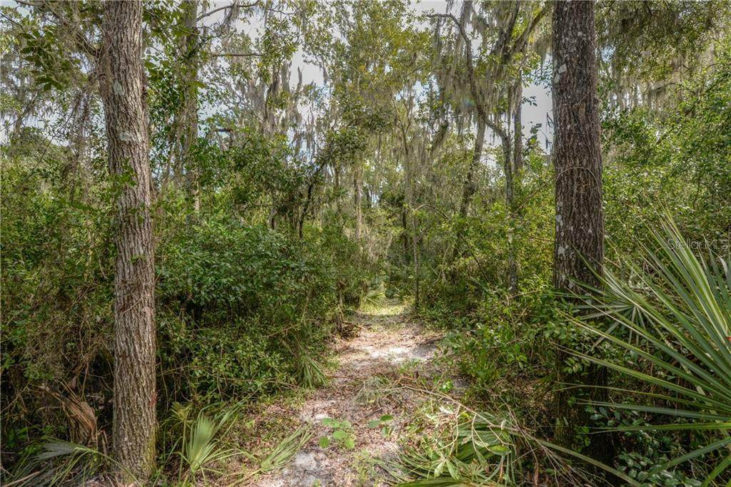 0 Lithia Springs Road - Photo 1