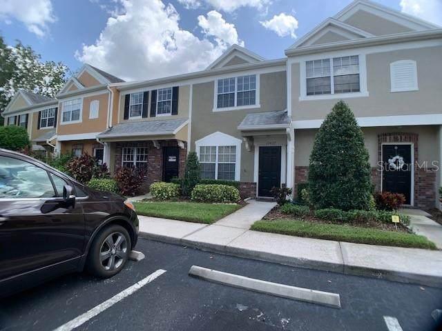 Address Not Published, Tampa, FL 33626 (MLS #T3264620) :: Team Buky