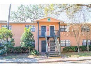 203 Pine Tulip Court #202, Tampa, FL 33612 (MLS #T3265469) :: Team Bohannon Keller Williams, Tampa Properties