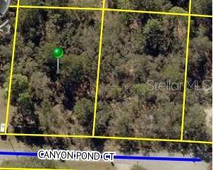Lot 18 Canyon Pond Court, Weeki Wachee, FL 34613 (MLS #T3266053) :: Team Borham at Keller Williams Realty