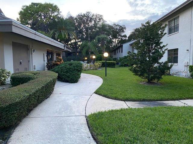 Address Not Published, Clearwater, FL 33761 (MLS #T3266541) :: Heckler Realty