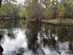 7141 Riverview Drive, Webster, FL 33597 (MLS #T3267724) :: Heckler Realty