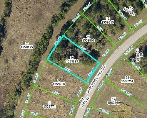 19533 Sheltered Hill Drive, Brooksville, FL 34601 (MLS #T3270971) :: Pepine Realty
