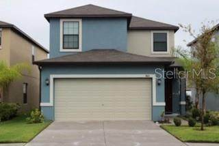 7415 Clary Sage Avenue, Tampa, FL 33619 (MLS #T3272029) :: Griffin Group