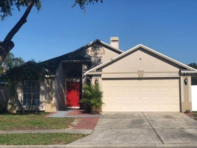 4820 Wellbrook Drive, New Port Richey, FL 34653 (MLS #T3272128) :: Sarasota Home Specialists