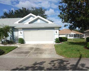 1029 Mcdaniel Street, Sun City Center, FL 33573 (MLS #T3272450) :: The Paxton Group
