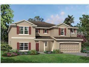 11736 Ranchers Gap Drive, Odessa, FL 33556 (MLS #T3272847) :: Icon Premium Realty
