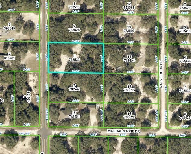 9202 Wheystone Drive, Webster, FL 33597 (MLS #T3276380) :: Delgado Home Team at Keller Williams