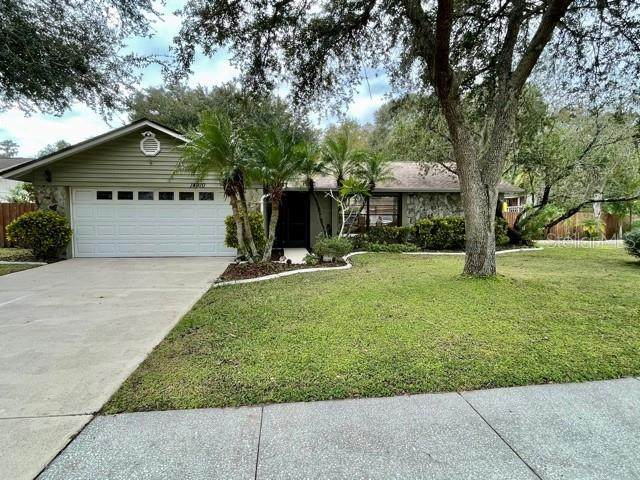 14910 Pelican Point Place, Tampa, FL 33625 (MLS #T3277216) :: Griffin Group