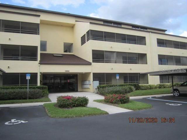 Tampa, FL 33618 :: Team Bohannon Keller Williams, Tampa Properties