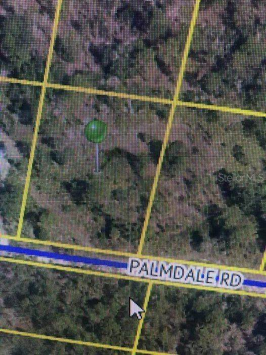Palmdale Road, Weeki Wachee, FL 34614 (MLS #T3277352) :: Bridge Realty Group