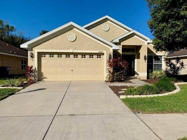 18525 Dajana Avenue, Land O Lakes, FL 34638 (MLS #T3278230) :: Key Classic Realty