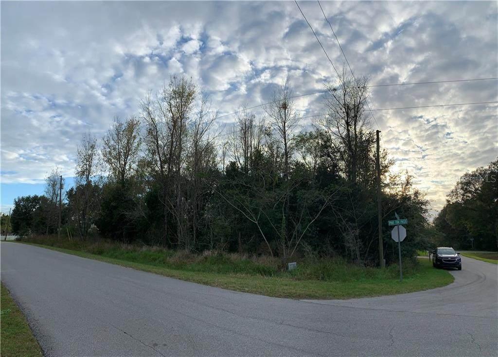 Pine Track Terrace - Photo 1