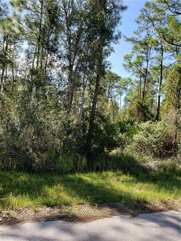 12557 Estrella Boulevard, Punta Gorda, FL 33955 (MLS #T3278683) :: Pepine Realty