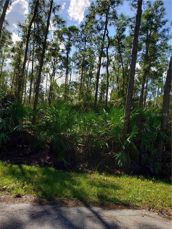 12553 Estrella Boulevard, Punta Gorda, FL 33955 (MLS #T3278688) :: Pepine Realty