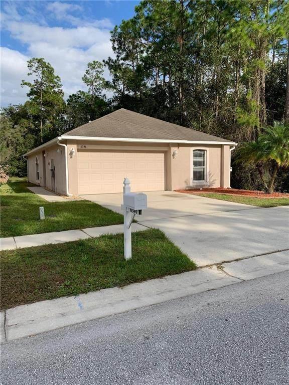 6346 Tabogi Trail, Wesley Chapel, FL 33545 (MLS #T3278740) :: Griffin Group