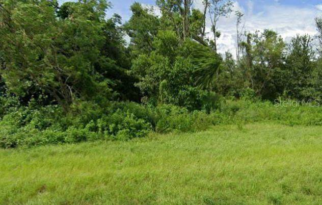 5325 Drane Field Road, Lakeland, FL 33811 (MLS #T3279341) :: Griffin Group