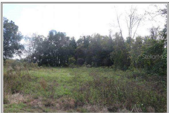 Knotgrass, Dade City, FL 33525 (MLS #T3279361) :: Griffin Group