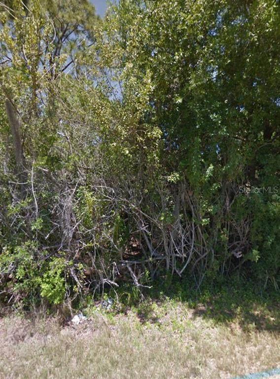 357 Gaynor Lane, Port Charlotte, FL 33953 (MLS #T3279986) :: Griffin Group