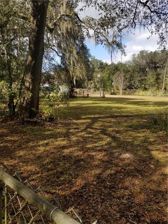 19398 SE 95TH Street, Ocklawaha, FL 32179 (MLS #T3280467) :: Sarasota Home Specialists