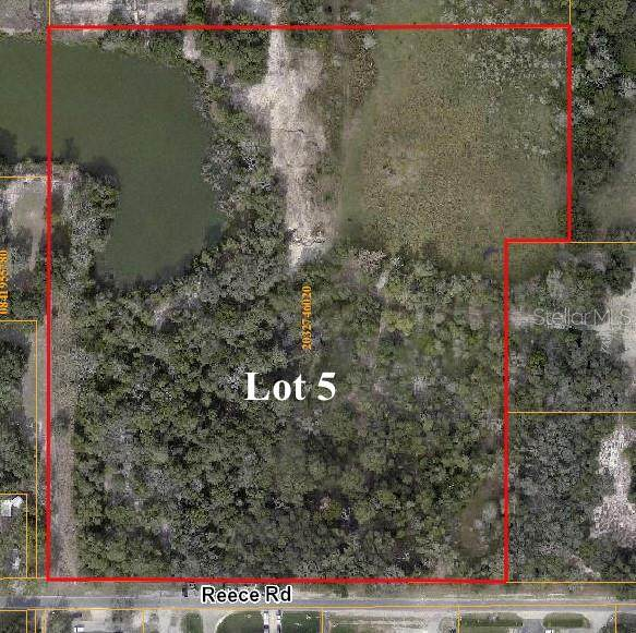 Reece Road, Plant City, FL 33566 (MLS #T3280935) :: The Kardosh Team