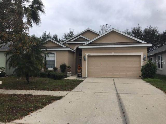 13704 Sigler Street, Riverview, FL 33579 (MLS #T3281421) :: The Robertson Real Estate Group