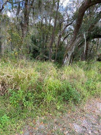 0 Drawdy Road, Plant City, FL 33567 (MLS #T3282352) :: Griffin Group