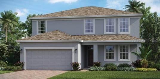 115 White Horse Way, Groveland, FL 34736 (MLS #T3284804) :: Dalton Wade Real Estate Group
