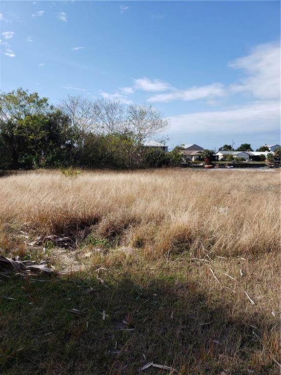 Sea Grape Drive, Hernando Beach, FL 34607 (MLS #T3286384) :: Pepine Realty