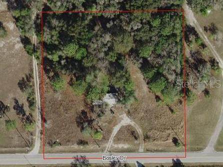 16645 Bosley Drive, Spring Hill, FL 34610 (MLS #T3288540) :: Bustamante Real Estate