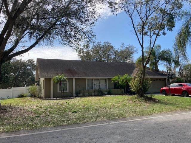 4201 Kipling Avenue, Plant City, FL 33566 (MLS #T3291159) :: Everlane Realty