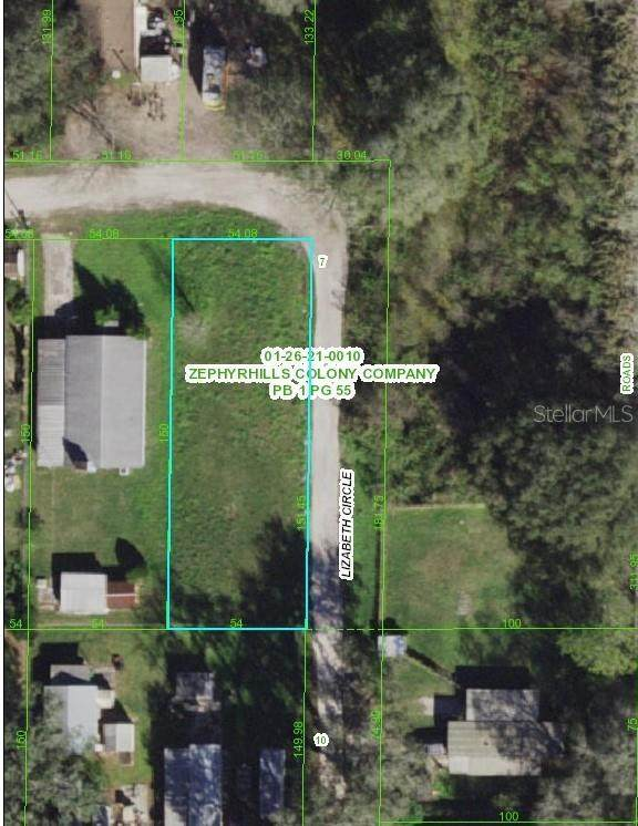 39256 Lizabeth Circle, Zephyrhills, FL 33542 (MLS #T3291377) :: Keller Williams Realty Peace River Partners