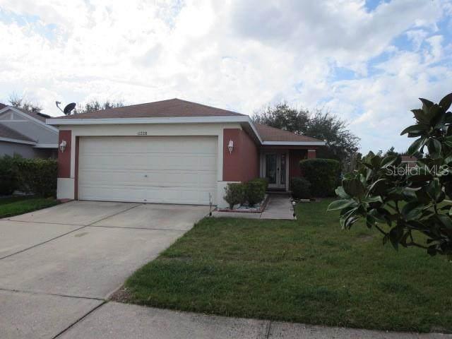 11228 Cocoa Beach Drive, Riverview, FL 33569 (MLS #T3291792) :: Bridge Realty Group