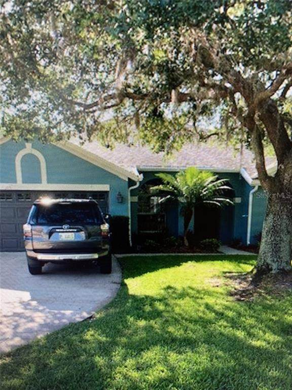 1653 Tawnyberry Court, Trinity, FL 34655 (MLS #T3292592) :: Premier Home Experts