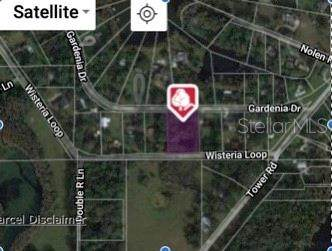 Gardenia Drive, Land O Lakes, FL 34638 (MLS #T3292669) :: Griffin Group