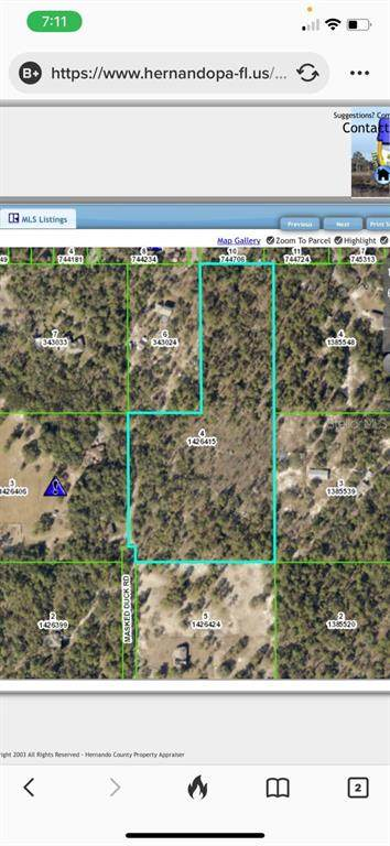 Masked Duck Road, Weeki Wachee, FL 34614 (MLS #T3293452) :: Carmena and Associates Realty Group